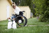 Disabled young woman on wheelchair looking at dogs in yard - MASF01873