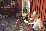 High angle view of happy mature female friends raising toast in back yard on sunny day - MASF02375
