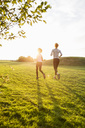 Rear view of mother and daughter running on grass at park against sky during sunset - MASF02931