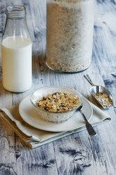 Homemade granola - EVGF03347