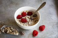 Bowl of homemade granola with raspberries - EVGF03350