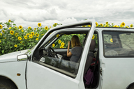 Woman photographing sunflower field while sitting in car - CAVF36492