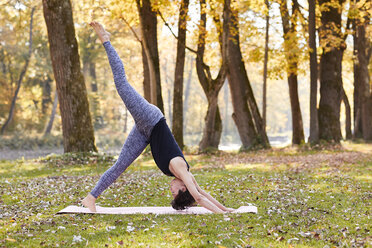 Mid adult woman in forest practicing yoga, downward facing dog position - SHOF00002