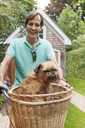 Happy man with Griffon Bruxellois in basket riding bicycle in backyard - CAVF36900