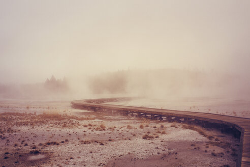 Boardwalk on geyser at Yellowstone National Park - CAVF37461