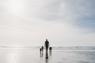 Rear view of father and daughter with dogs walking at beach against sky - CAVF37638