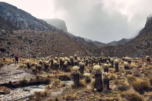 Hiker in mountain valley - CAVF37941