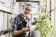 Smiling gardener with digital tablet holding tomato in greenhouse - MASF03292
