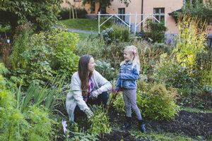 Daughter talking to mother while gardening at field - MASF03652