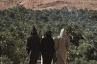 Rear view of friends wearing djellabas while standing against palm trees at desert - CAVF38285