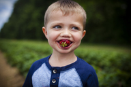 Happy boy looking away while eating strawberry - CAVF38345
