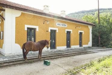 Greece, Pilion, Ano Gatzea, horse standing in front of train station of Narrow Gauge Railway - MAMF00055