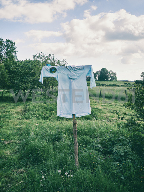 Ssarecrow on a meadow - MUF01525