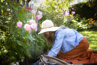 Smiling woman gardening by fence in yard - CAVF40410