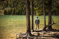 Rear view of hiker standing at lakeshore in forest - CAVF40644