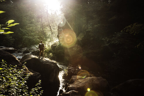 Full length of hiker standing on rock by stream in forest on sunny day - CAVF40671