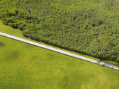 Overhead view of boardwalk amidst green landscape - CAVF41375
