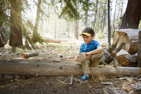Close-up of boy wearing shoes while sitting on fallen tree at field - CAVF42026
