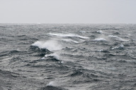 Big waves on sea during a storm - MASF05743