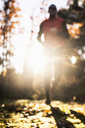 Defocused imaged of man jogging in forest - MASF05857