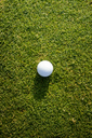High angle view of golf ball on grass - CAVF43531