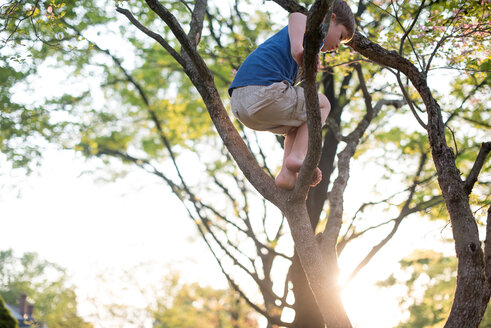 Low angle view of boy standing on branches against sky at park - CAVF43642