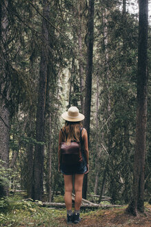 Rear view of woman with backpack standing in forest - CAVF43777
