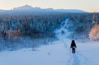 Rear view of man skiing on snowy field against sky - CAVF43855