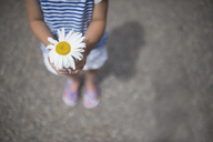 Low section of girl holding white daisy while standing on street - CAVF44161
