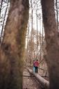 Boys (6-7) exploring forest - CAVF44212