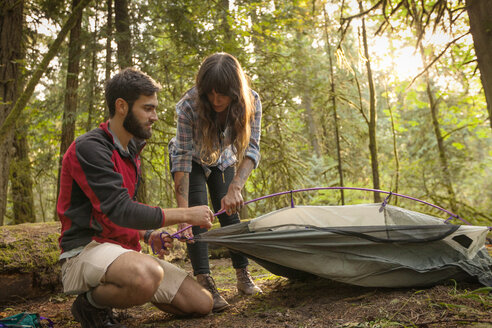 Couple preparing tent in forest - CAVF44956