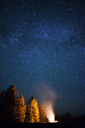 Campfire on field in forest against star field at night - CAVF45897