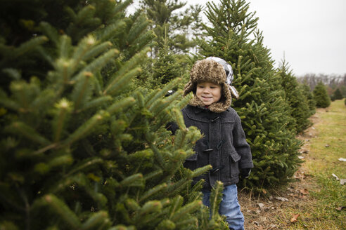 Happy boy looking at pine trees in farm - CAVF46008