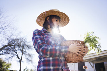 Young female farmer carrying basket in farm during sunny day - CAVF46200