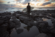 Rear view of surfer carrying surfboard while standing on rocky shore during sunset - CAVF47336