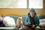 Boy using tablet computer while sitting with Chihuahua on sofa at home - CAVF47387