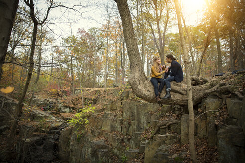 Couple sitting on tree trunk in forest - CAVF47900