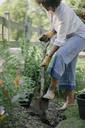 Woman shoveling soil in garden - CAVF48144