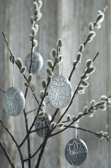 Hand-painted Easter eggs hanging from Pussy Willow twigs - ASF06176