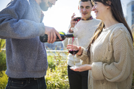 Man pouring red wine for female friend during garden party - CAVF48231