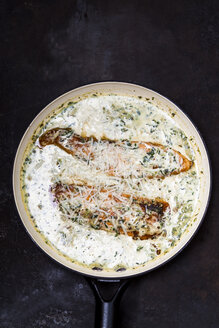 Salmon in spinach sauce and dried tomato - SBDF03541