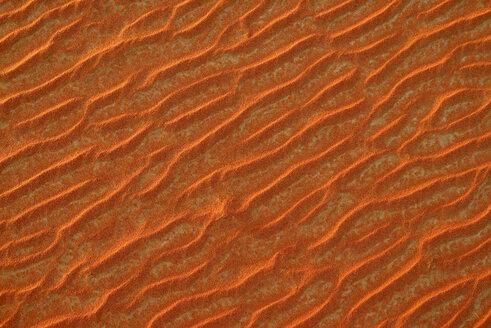 United Arab Emirates, Rub' al Khali, desert sand and ripple marks - ESF01579