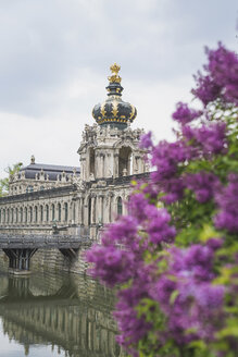 Germany, Saxony, Dresden, Zwinger palace and flowering lilac - ASC00855