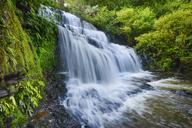 New Zealand, South Island, Catlins, Purakaunui Falls - RUEF01874