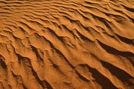 Africa, Algeria, Sahara, ripple marks, texture on a sanddune - ESF01607
