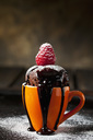 Chocolate cup cake with icing sugar, chocolate sauce and raspberry - CSF29088