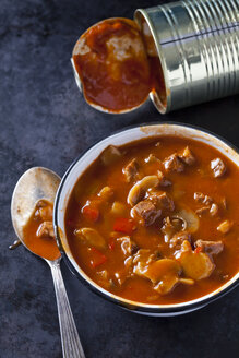 Bowl of Hungarian goulash soup - CSF29139