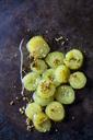 Silesian cucumbers in dill stock on dark ground - CSF29157