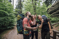 Friends on a hiking trip looking up - GUSF00724