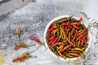 A bowl with chilis, Capsicum annuum - SBDF03581
